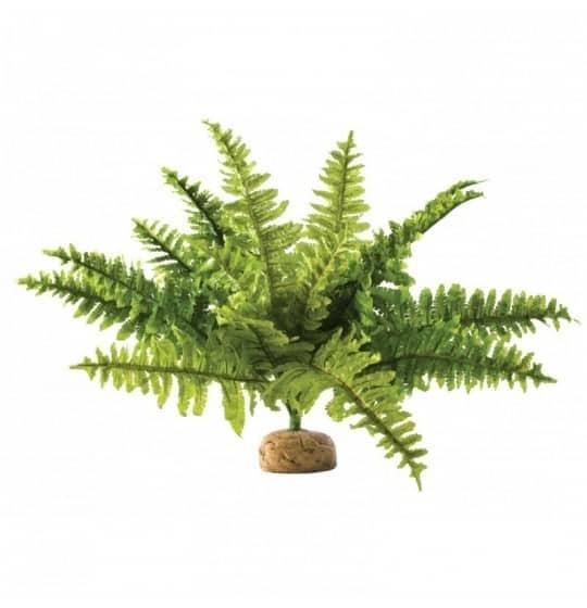 Roślina sztuczna – Paproć...