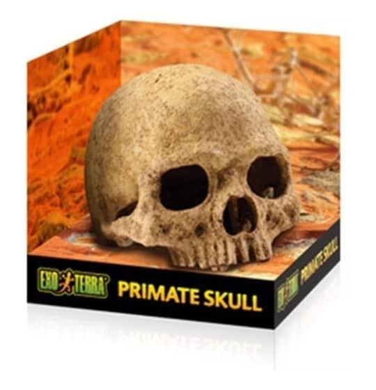 Ozdoba do akwarium czaszka...