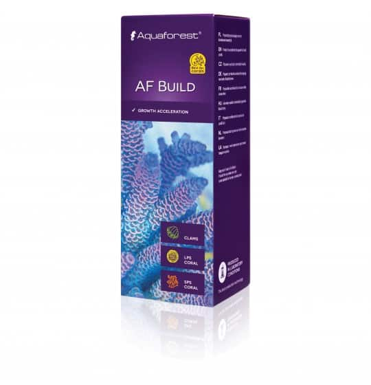 AF Build 50ml