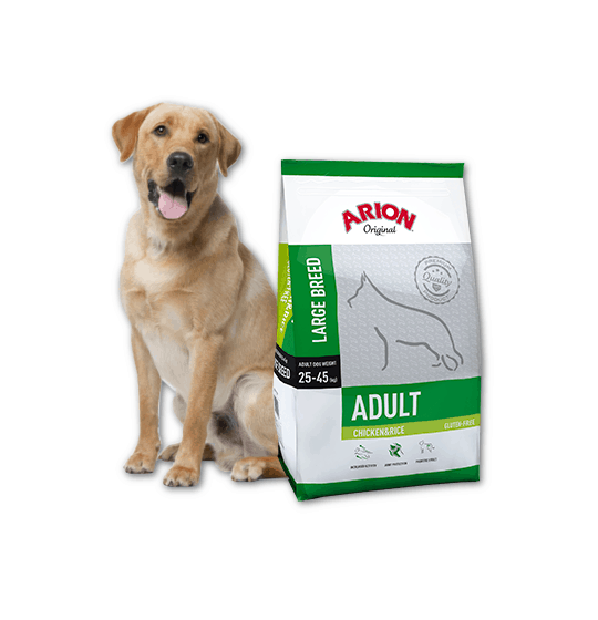 Adult Large Breed...