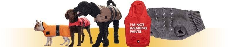 Ubranka dla psa