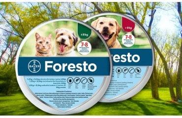 Obroża foresto dla psa i kota do 8 kg i powyżej. Obroża na kleszcze.
